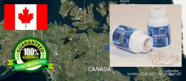 Dove acquistare Anabolic Steroids in linea Canada