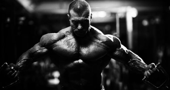 Where to Buy Steroids in Saguenay